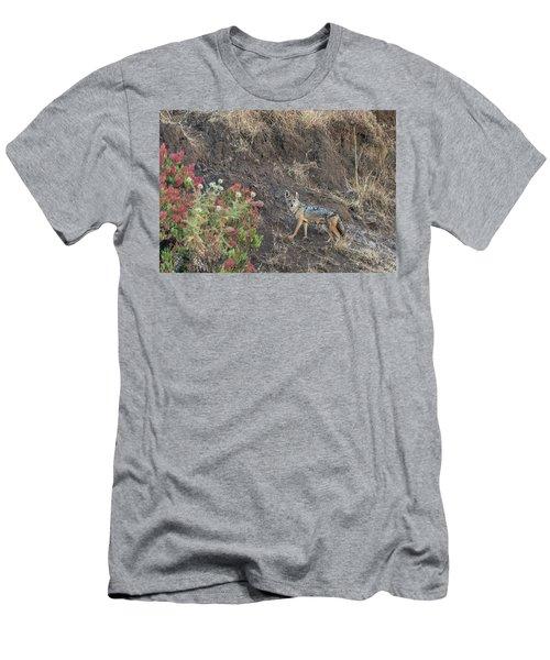 Men's T-Shirt (Athletic Fit) featuring the photograph Black Backed Jackal by Alex Lapidus