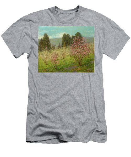 Blossom Time In Saratoga, California, 1909 Men's T-Shirt (Athletic Fit)