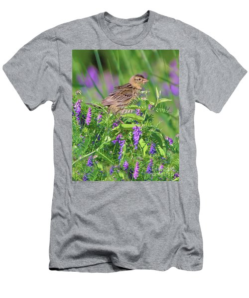 Bobolink Men's T-Shirt (Athletic Fit)