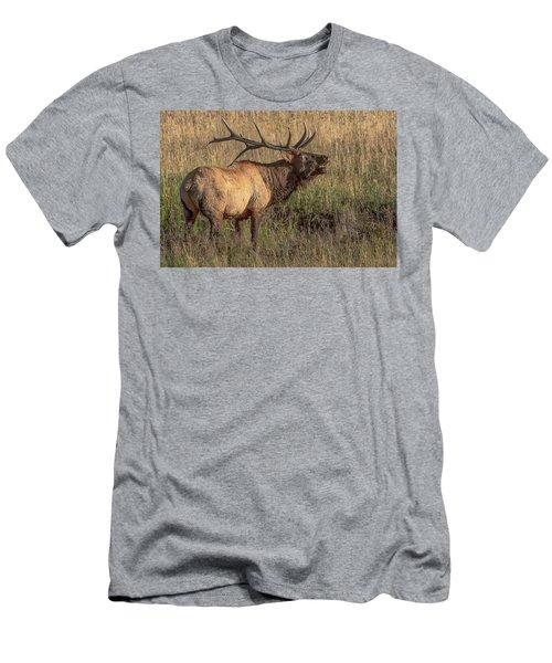 Bugling Bull Elk 7777 Men's T-Shirt (Athletic Fit)