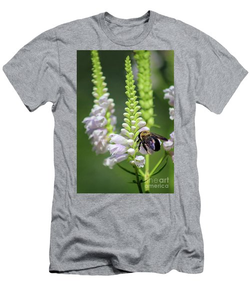 Bumblebee On Obedient Flower Men's T-Shirt (Athletic Fit)