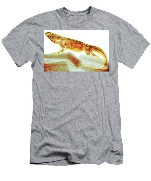 C025/8504 Men's T-Shirt (Athletic Fit)