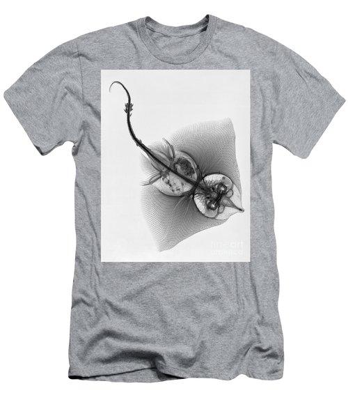 C038/4644 Men's T-Shirt (Athletic Fit)