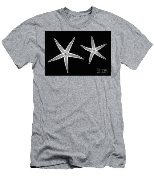 C038/4739 Men's T-Shirt (Athletic Fit)