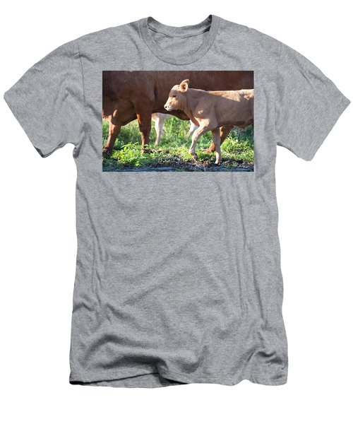 Men's T-Shirt (Athletic Fit) featuring the photograph Calf by Rob D Imagery
