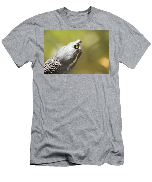Close Up Of A Turtle. Men's T-Shirt (Athletic Fit)