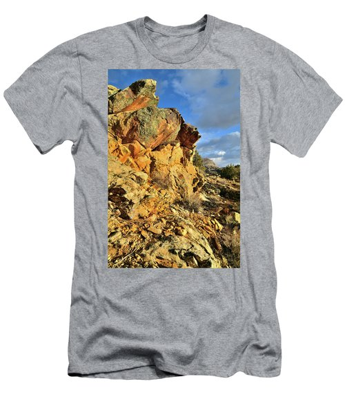 Colorful Crags In Colorado National Monument Men's T-Shirt (Athletic Fit)