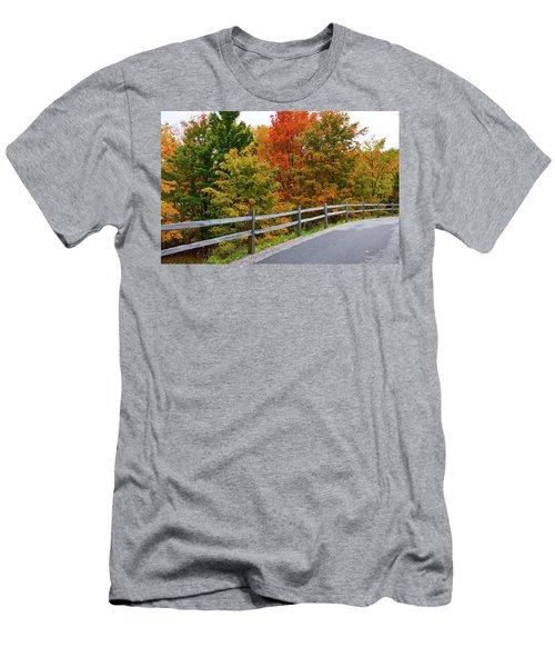 Colorful Lane Men's T-Shirt (Athletic Fit)