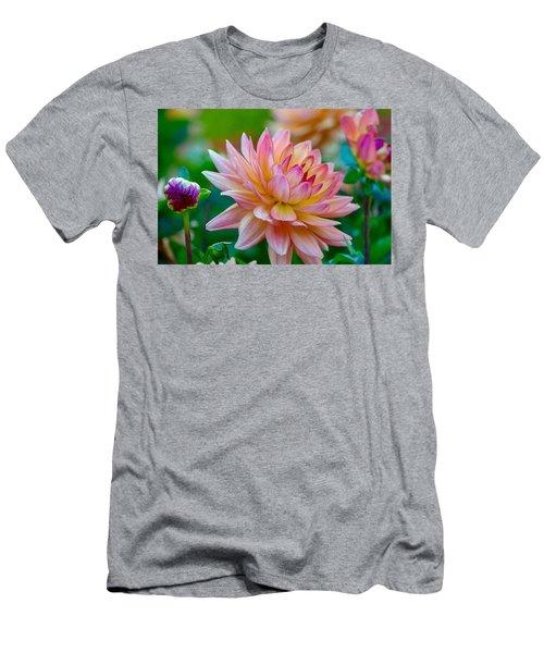 Dahlia Splendor Men's T-Shirt (Athletic Fit)