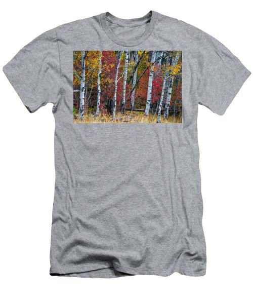 Deep Aspens Men's T-Shirt (Athletic Fit)