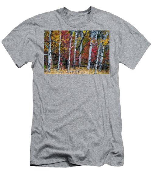 Deep Aspens Men's T-Shirt (Athletic Fit)