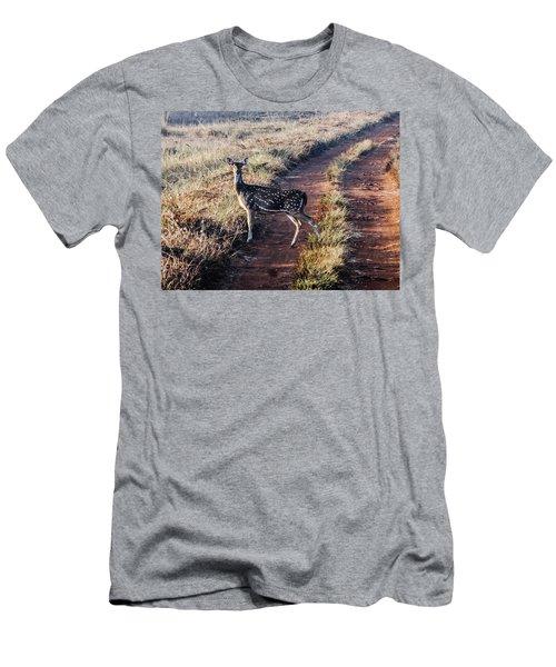 Deer Posing Men's T-Shirt (Athletic Fit)