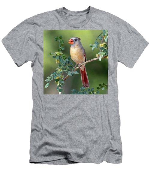 Fabulous Female Cardinal Men's T-Shirt (Athletic Fit)