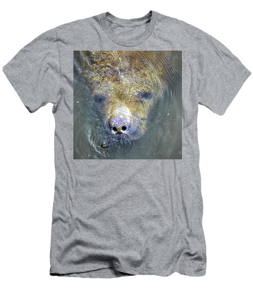 Face Of The Manatee Men's T-Shirt (Athletic Fit)