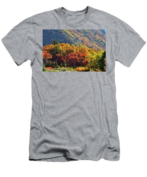Fall Colors Along Avalanche Creek Road Men's T-Shirt (Athletic Fit)