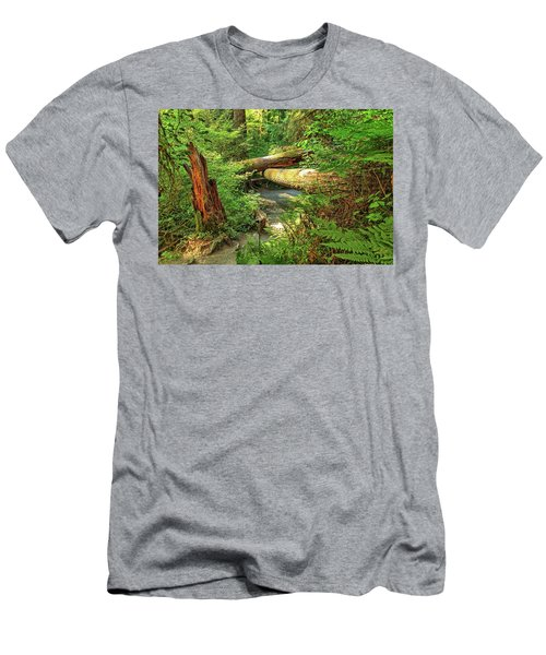 Fallen Trees In The Hoh Rain Forest Men's T-Shirt (Athletic Fit)