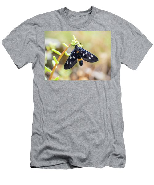 Fegea - Amata Phegea -black Insect With White Spots And Yellow Details Men's T-Shirt (Athletic Fit)