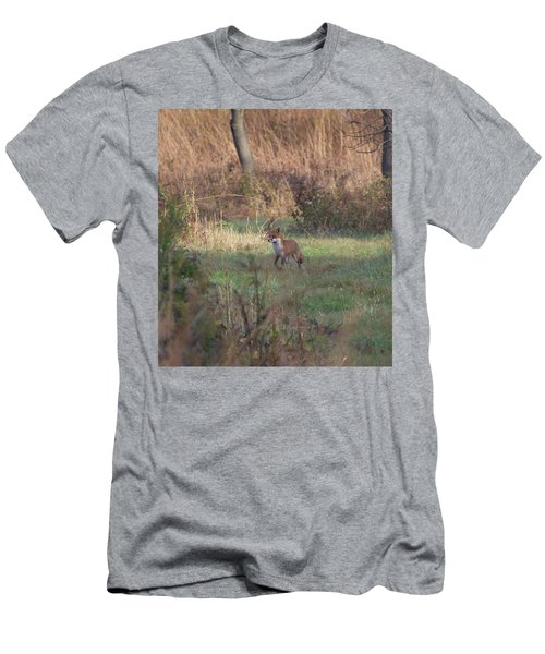 Fox On Prowl Men's T-Shirt (Athletic Fit)