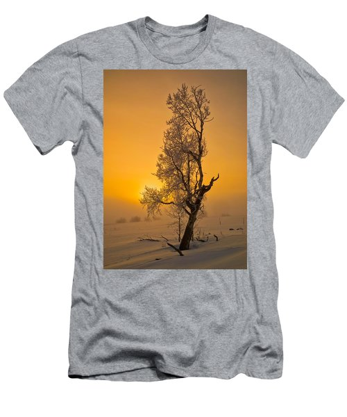 Frosted Tree Men's T-Shirt (Athletic Fit)