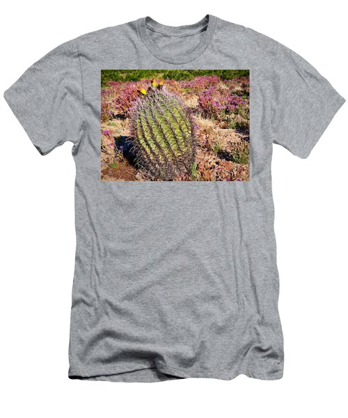 Fruit-bearing Barrel Cactus In Desert Rhubarb Men's T-Shirt (Athletic Fit)