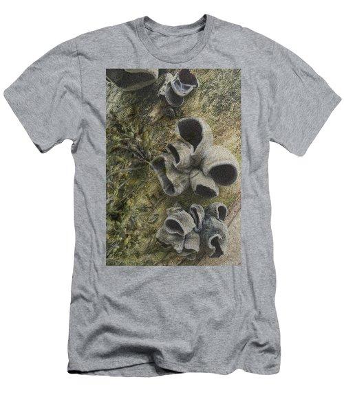 Fungi And Algae Men's T-Shirt (Athletic Fit)