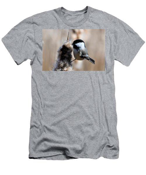 Fuzzy Buddies Men's T-Shirt (Athletic Fit)