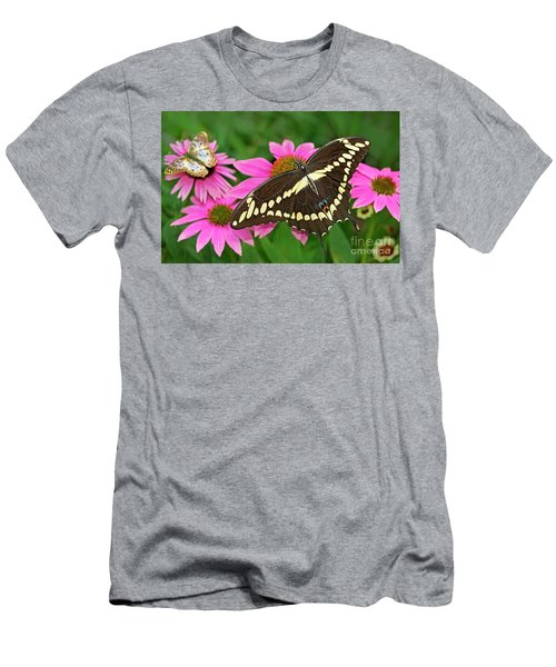 Giant Swallowtail Papilo Cresphontes Men's T-Shirt (Athletic Fit)