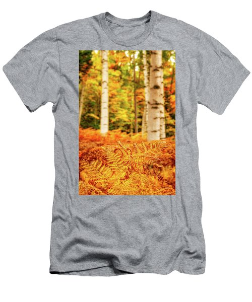 Golden Ferns In The Birch Glade Men's T-Shirt (Athletic Fit)