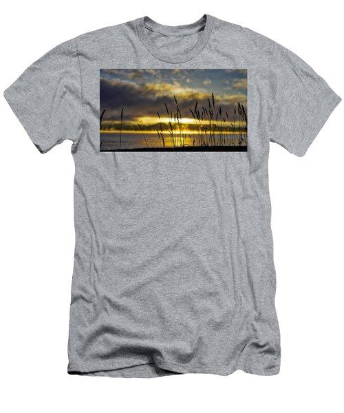 Grassy Shoreline Sunrise Men's T-Shirt (Athletic Fit)