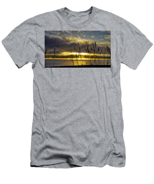 Grassy Shoreline Sunrise Men's T-Shirt (Athletic Fit)
