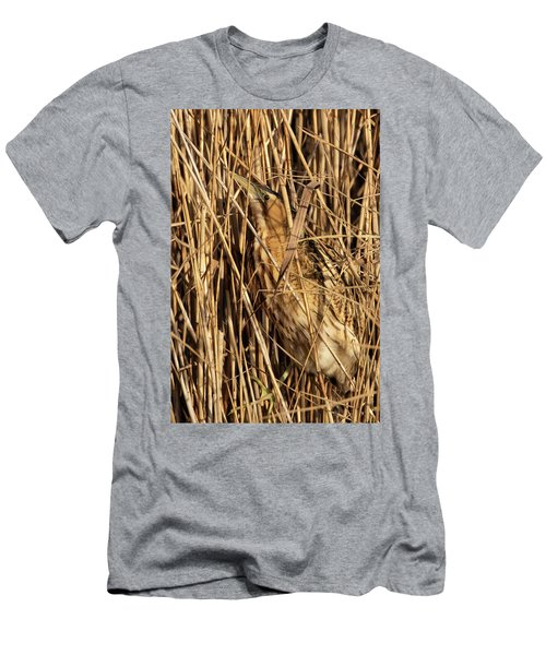 Great Bittern Men's T-Shirt (Athletic Fit)