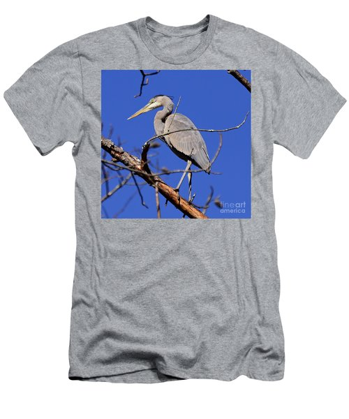Great Blue Heron Strikes A Pose Men's T-Shirt (Athletic Fit)