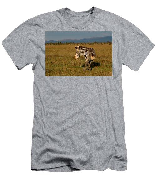 Grevy's Zebra Men's T-Shirt (Athletic Fit)