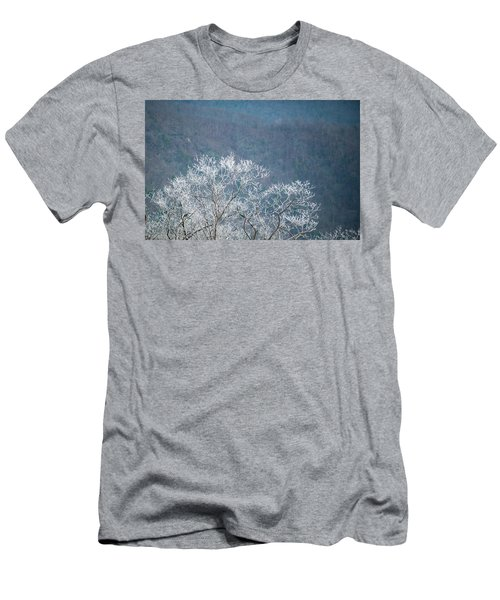 Hoarfrost Collects On Branches Men's T-Shirt (Athletic Fit)