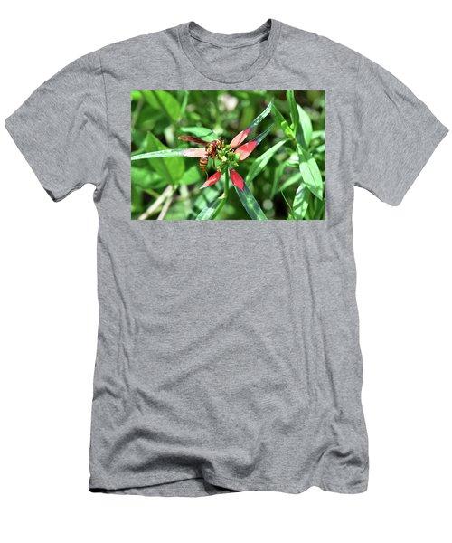 Hornet On Wild Poinsettia Men's T-Shirt (Athletic Fit)