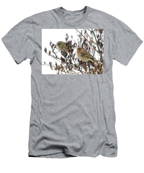 House Finch Pair Men's T-Shirt (Athletic Fit)