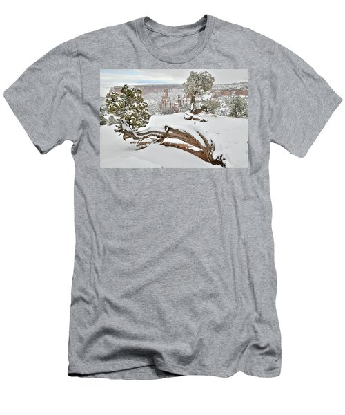 Independence Canyon Of Colorado National Monument Men's T-Shirt (Athletic Fit)