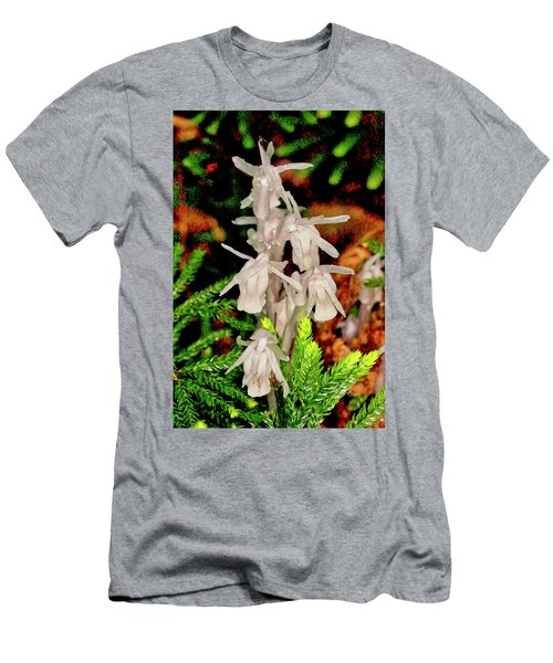 Indian Pipes On Club Moss Men's T-Shirt (Athletic Fit)