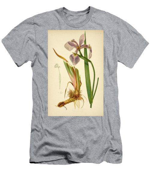 Iris Versicolor Blue Flag Men's T-Shirt (Athletic Fit)