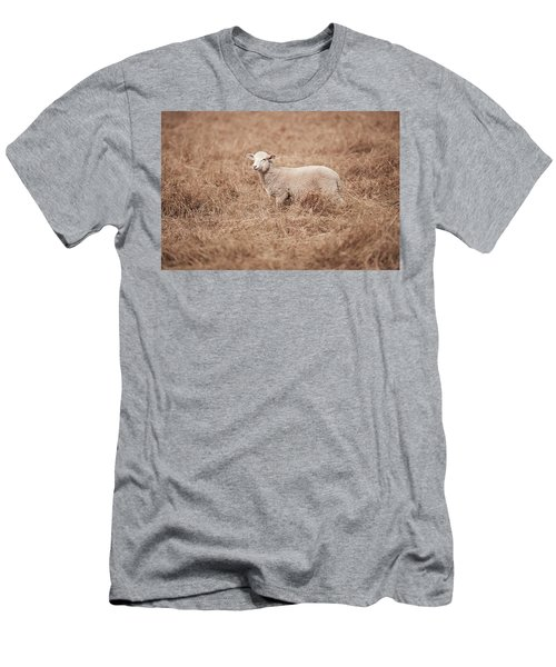 Lamb Men's T-Shirt (Athletic Fit)