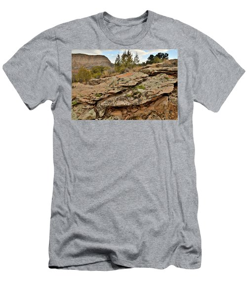 Lichen Covered Ledge In Colorado National Monument Men's T-Shirt (Athletic Fit)