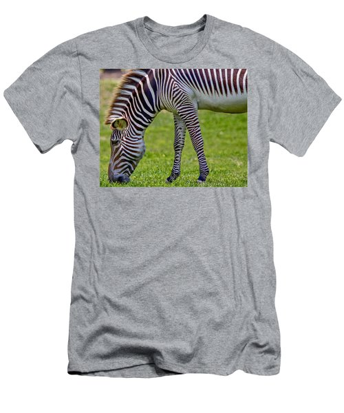 Love Zebras Men's T-Shirt (Athletic Fit)