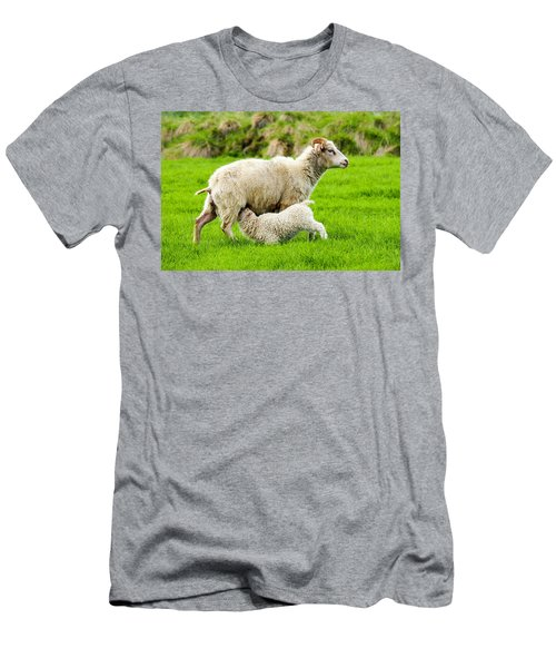 Men's T-Shirt (Athletic Fit) featuring the photograph Lunchtime For Baby Lamb by Marla Craven