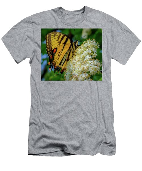 Manassas Butterfly Men's T-Shirt (Athletic Fit)