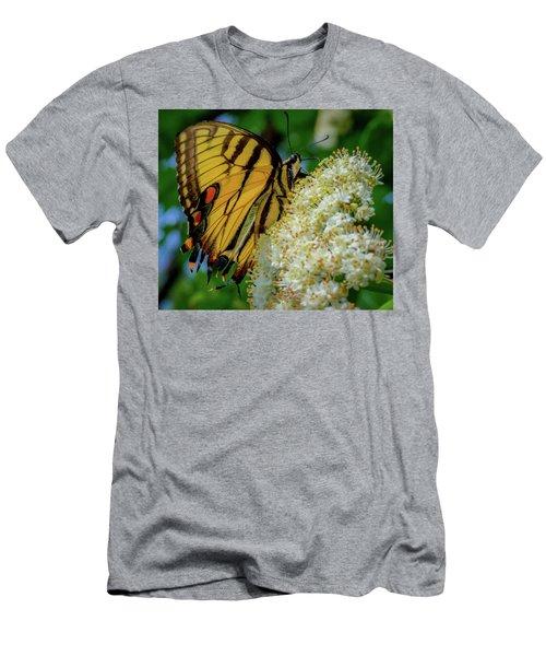 Manassas Butterfly Men's T-Shirt (Athletic Fit)