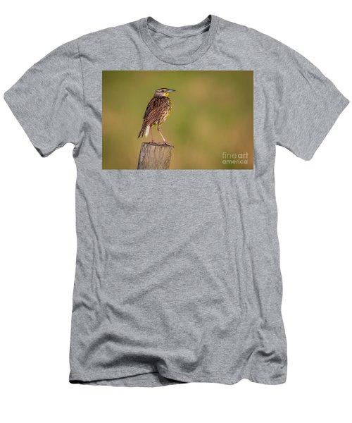 Meadowlark On Post Men's T-Shirt (Athletic Fit)