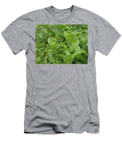 Minty Fresh Men's T-Shirt (Athletic Fit)
