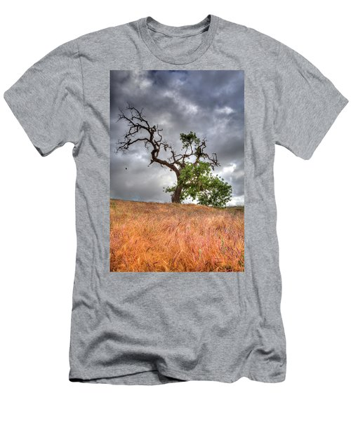Old Oak Tree Men's T-Shirt (Athletic Fit)