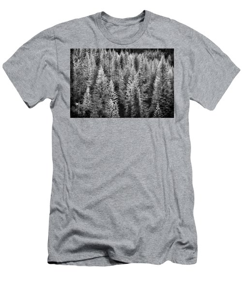 One Of Many Alp Trees Men's T-Shirt (Athletic Fit)