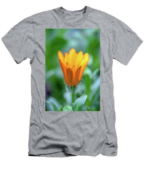 Orange Daisy Men's T-Shirt (Athletic Fit)